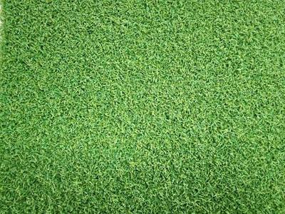 临沂人造草坪